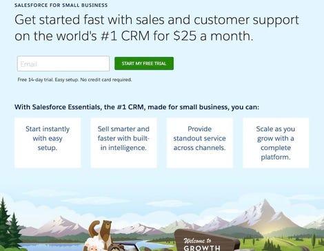Salesforce Essentials website