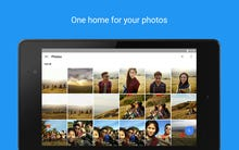Google rolls out Shared Albums in time for holiday family photos and videos