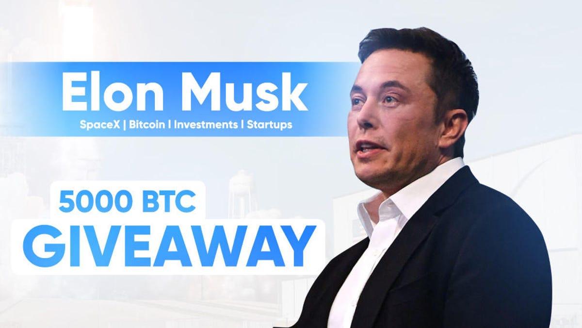 bitcoin profit acum musk)