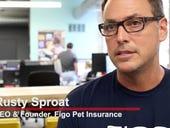 CEO explains how tech helps Figo Pet Insurance stay nimble