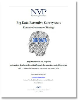 big-data-17-nvp-cover.jpg