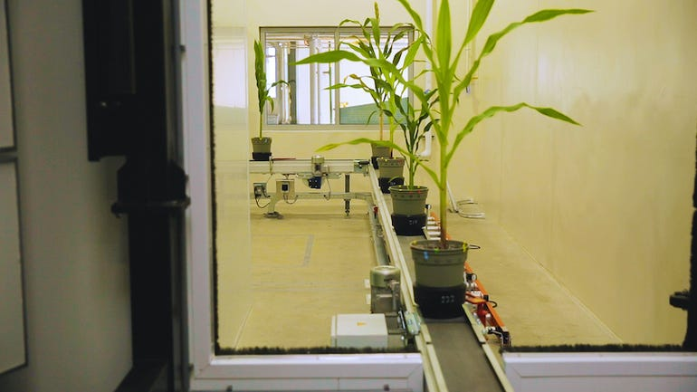 Testing plant growth