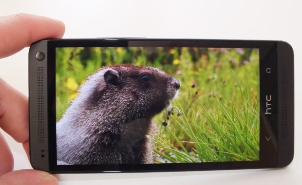 The HTC One's display helped to push the handset just ahead of the Xperia Z, illustrated nicely by a marmot in the picture above.