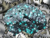 Survey: Is artificial intelligence the future of IT?