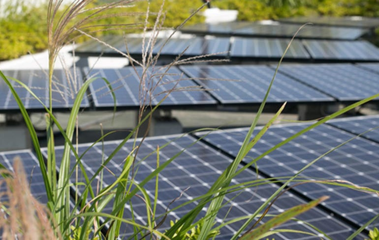 Japan's Fujisawa Sustainable Smart Town