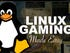 Linux gaming is possible