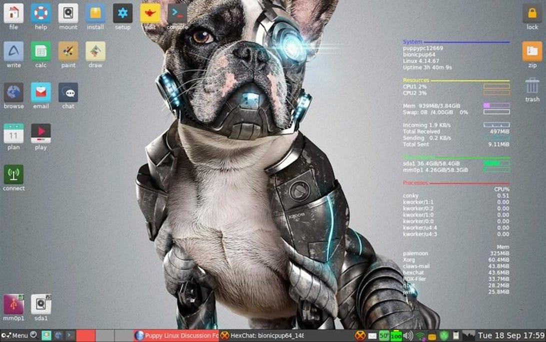 puppy-linux.jpg