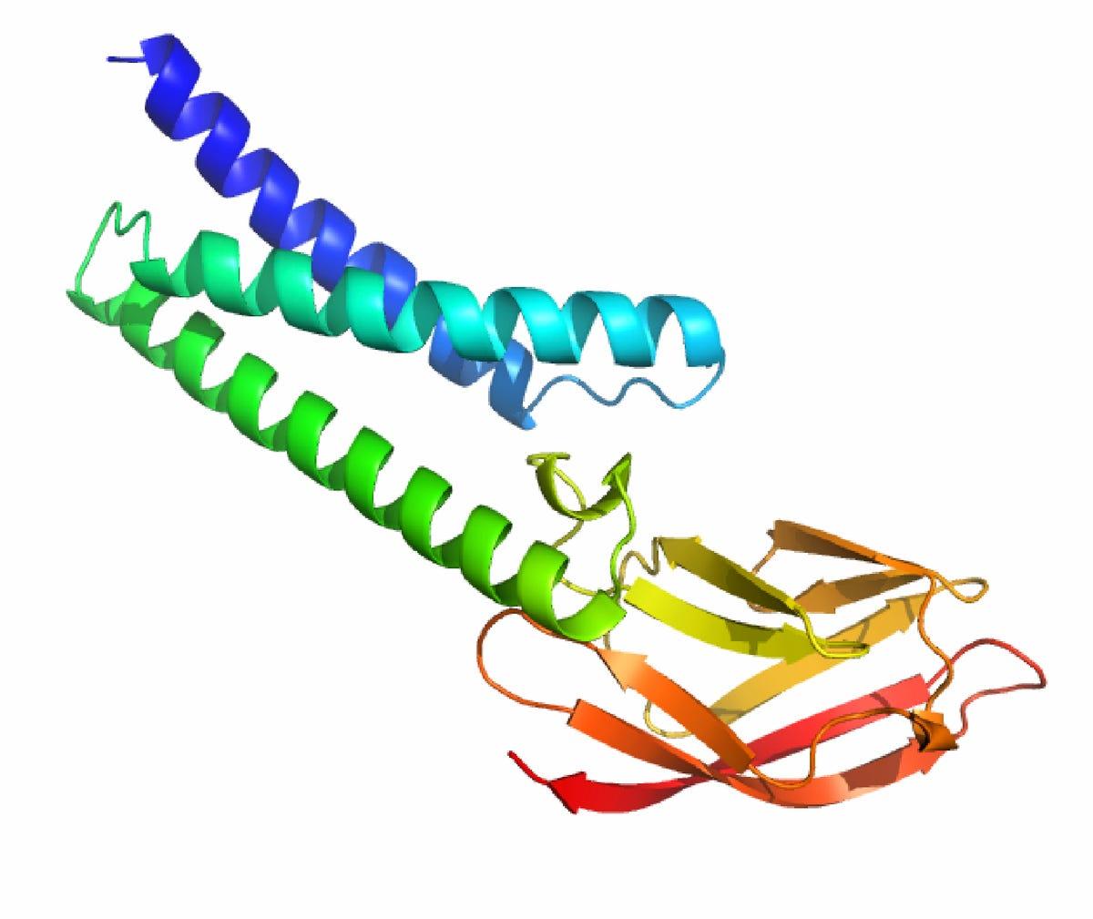 deepmind-coronavirus-protein-image.png