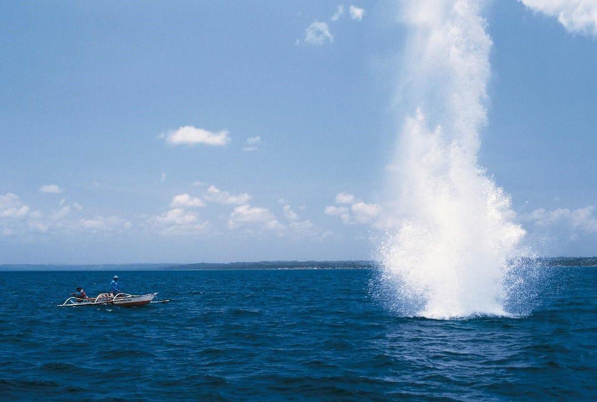 iuu-blast-fishing-csiro.jpg