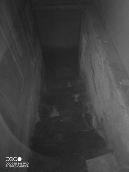 Doogee S96Pro example night vision photo