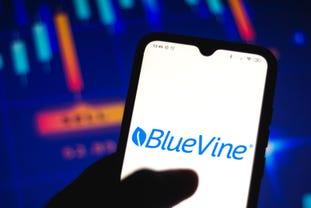 bluevine.jpg