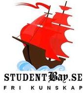 student bay website designer charged copyright infringement