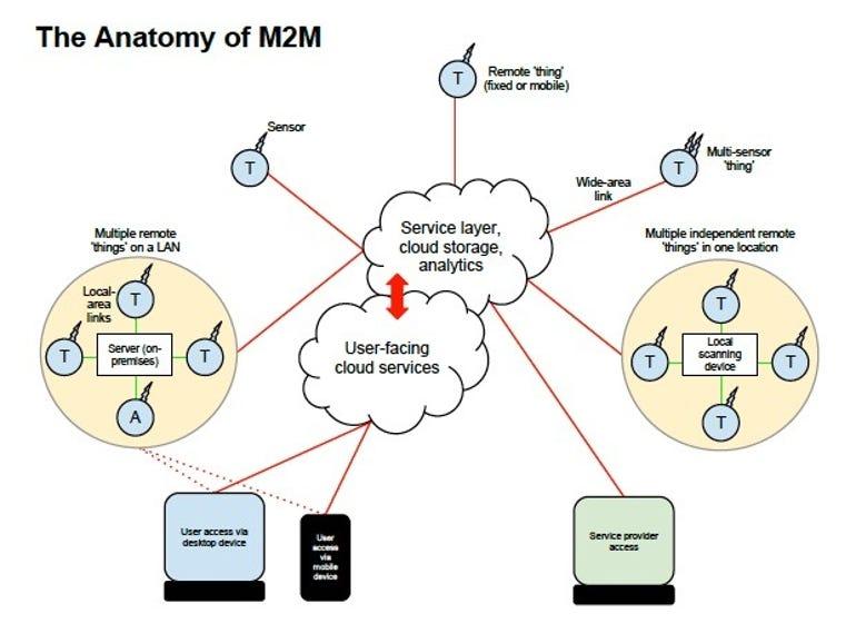 m2m-anatomy-620x465