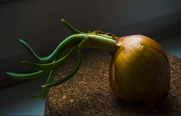 Onions?