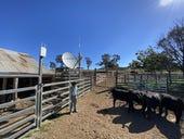 Optus kicks off trials involving trio of satellite voice services