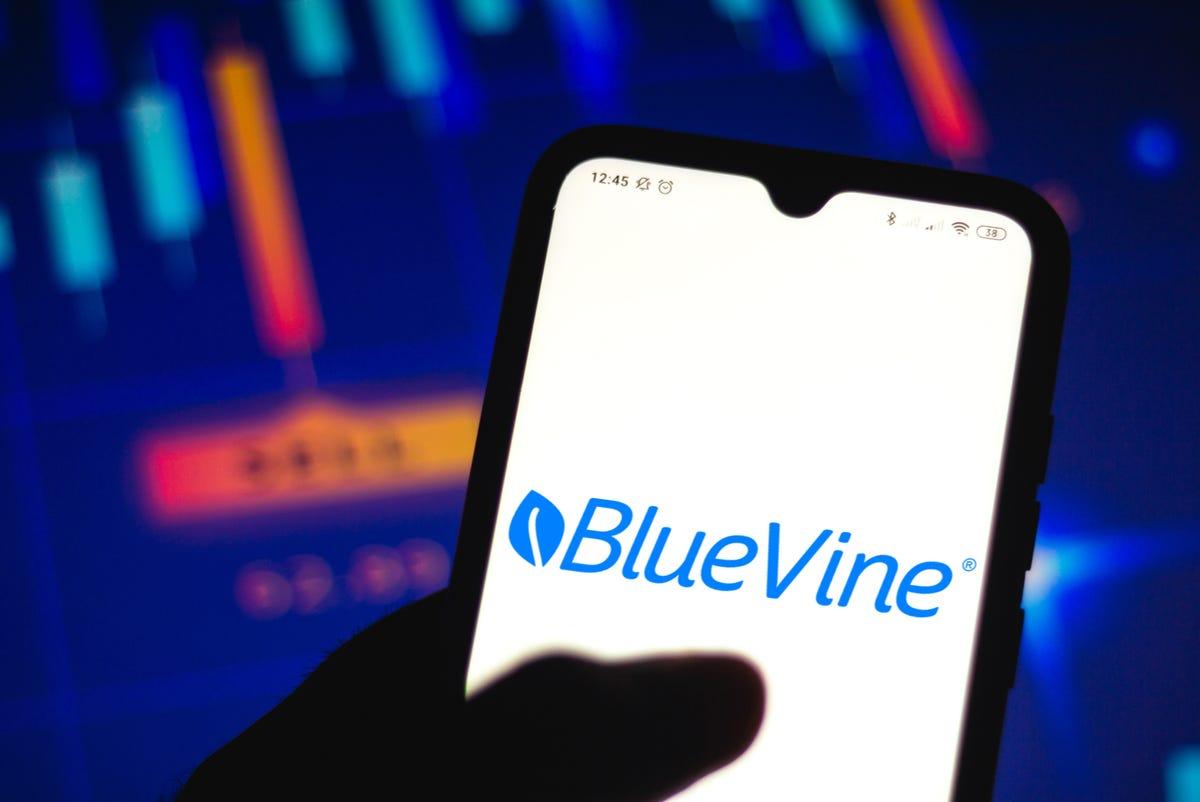 bluevine-business-checking.jpg