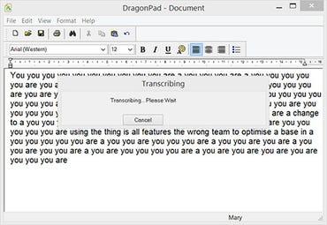 dns-13-transcribe