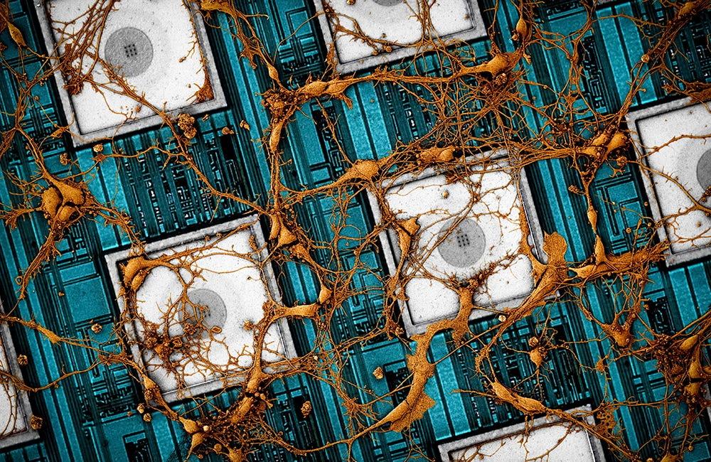 neuromorphic-chips-0926-main1.jpg