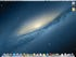 The fun, but pricey, Mac OS X desktop