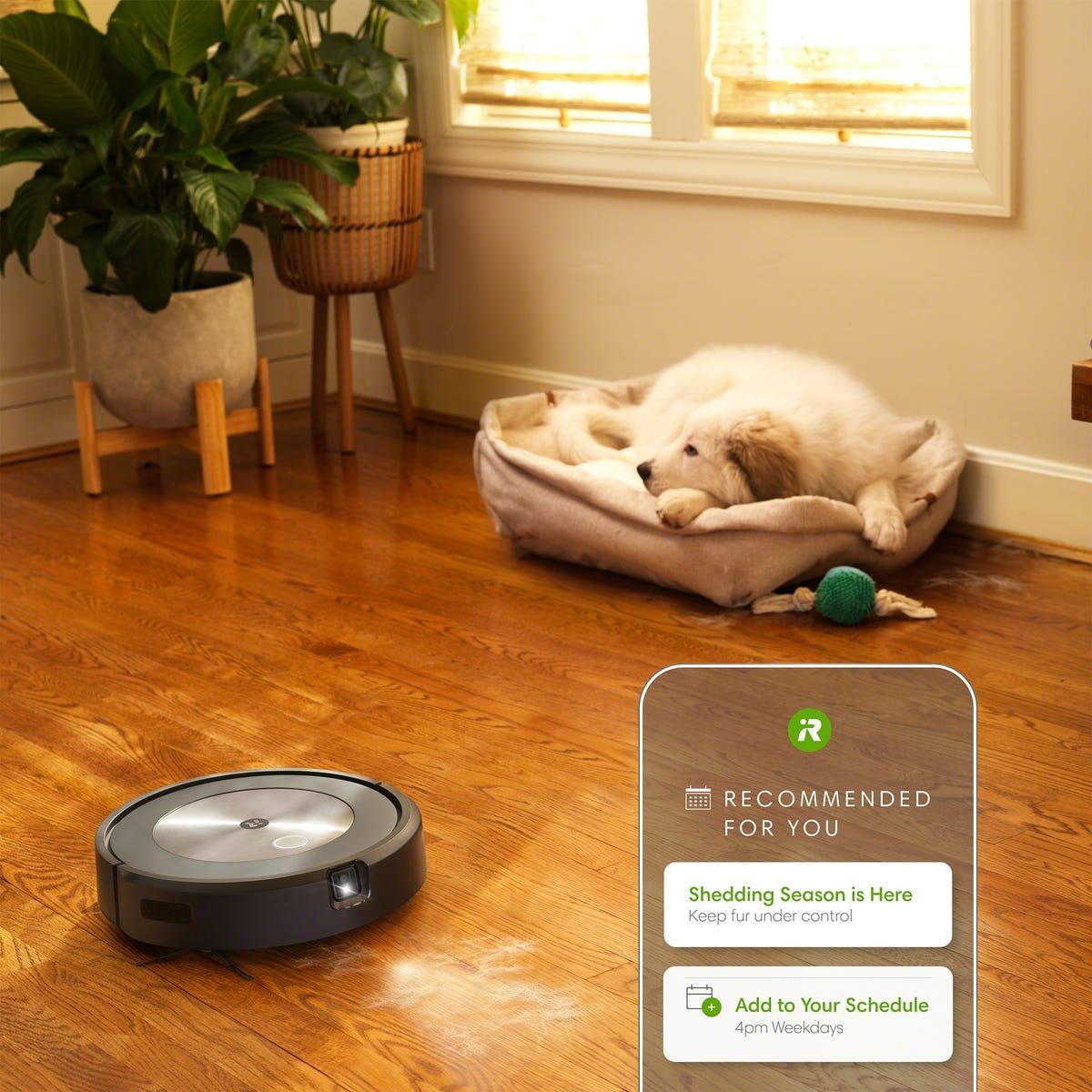 Roomba j7+ et Genius 3.0 : Il faut beaucoup beaucoup d'IA pour éviter les crottes de chien