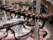 Case Study: Next generation Wi-Fi network extends the Fernbank museum experience