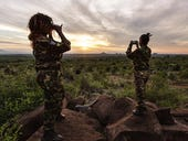 Wildlife Watch and the Black Mambas: Using smartphones and video streams to protect animals