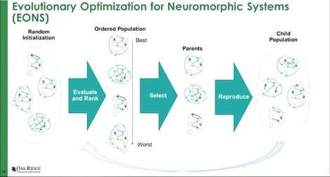 201117-sc20-evolutionary-optimization-for-neuromorphic-systems.jpg