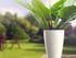 Just a plant pot?