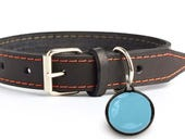 Poof pet activity tracker-a well built device but the app needs work