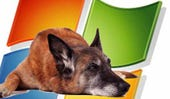 dogslowxpmachine