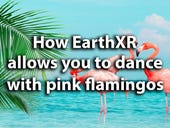 Want to dance with pink flamingos? You can at EarthXR