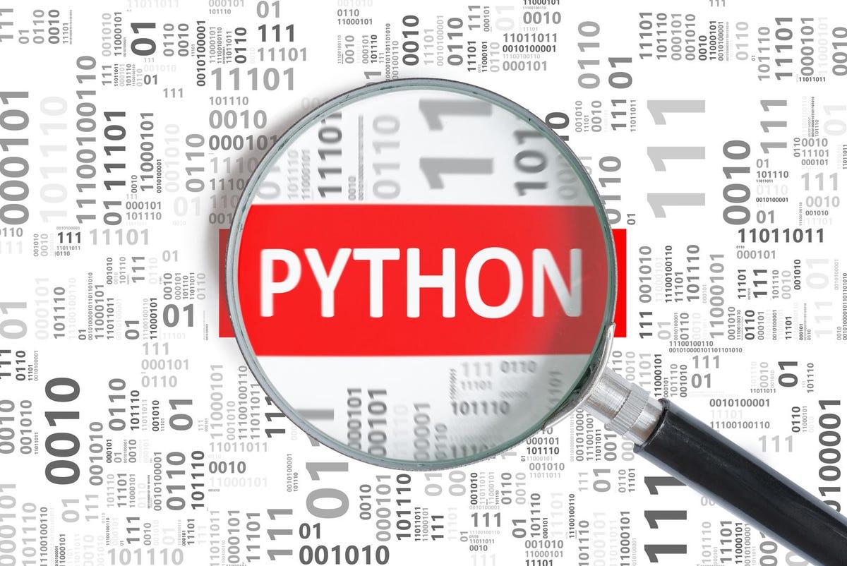 python4.jpg