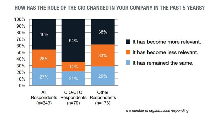 CIO role