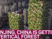 Vertical forest takes root in China