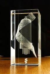 Tony Sale Award