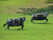 Check out these cool pictures of the Marines' new robotic horse (Gallery)