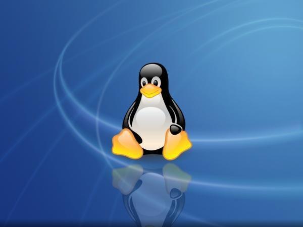 linux-os-tux.jpg