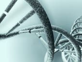 From digital to biological: Why the future of storage is all about DNA