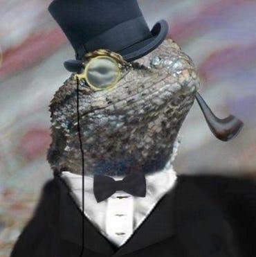 lizardstresser-iot-botnet.jpg