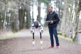 agility-robotics-cassie.jpg