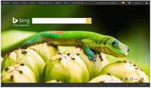 Microsoft launches ad-free 'Bing in the Classroom'