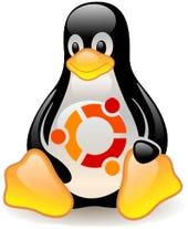 Ubuntu Tux penguin