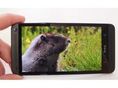 The HTC One Google Edition? A Sense-less plan, if you ask me