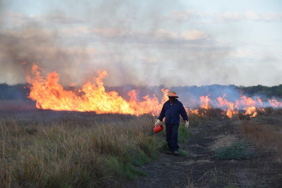 telstra-savanna-burning-offset.jpg