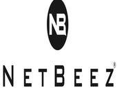 NetBeez testing enterprise networks