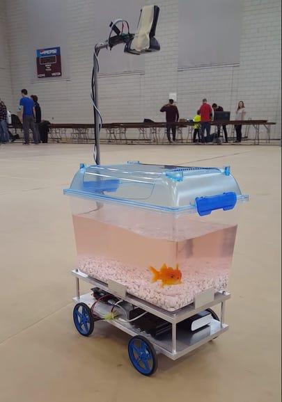 Self-driving fish