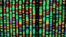 Best DNA Ancestry Testing Kits
