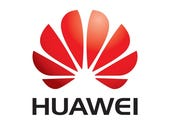 Huawei: U.S. market a 'commercial disappointment'