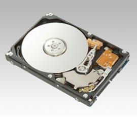 Fujitsu MHX2300BT 300GB