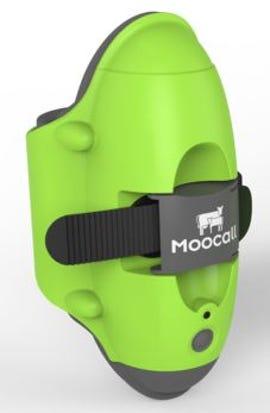 Moocall sensor close up
